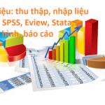 Dịch vụ Nghiên cứu, thống kê và phân tích định lượng